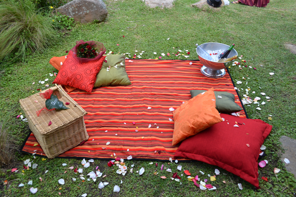 Dial A Picnic Magical Picnic For Two Romantic Picnic